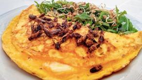 Insectos comestibles: de un manjar ancestral al alimento del futuro.