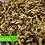 Thumbnail: Proteina de Insecto Deshidratada | Larva Soldado Negro Entera Deshidratada
