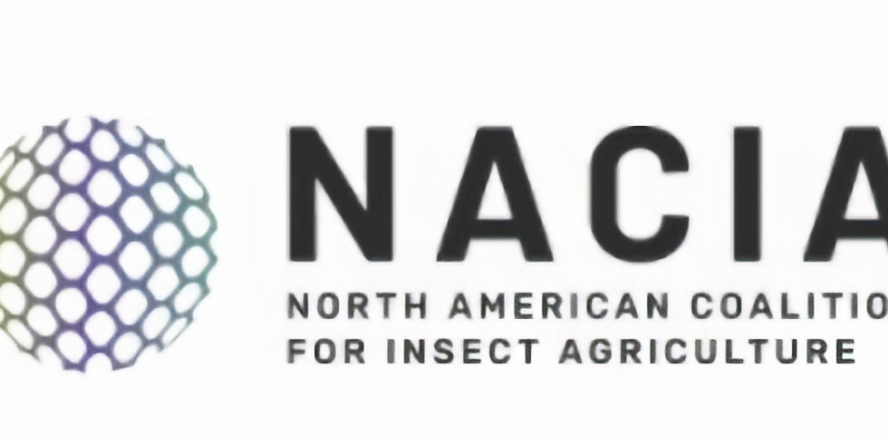 Farming Insects by NACIA