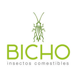 Edible Insect Bug | Mexico