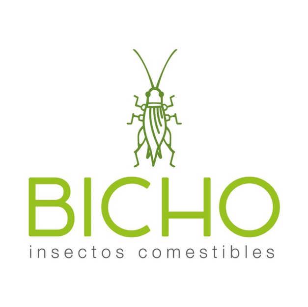 Bicho Insectos Comestibles | México