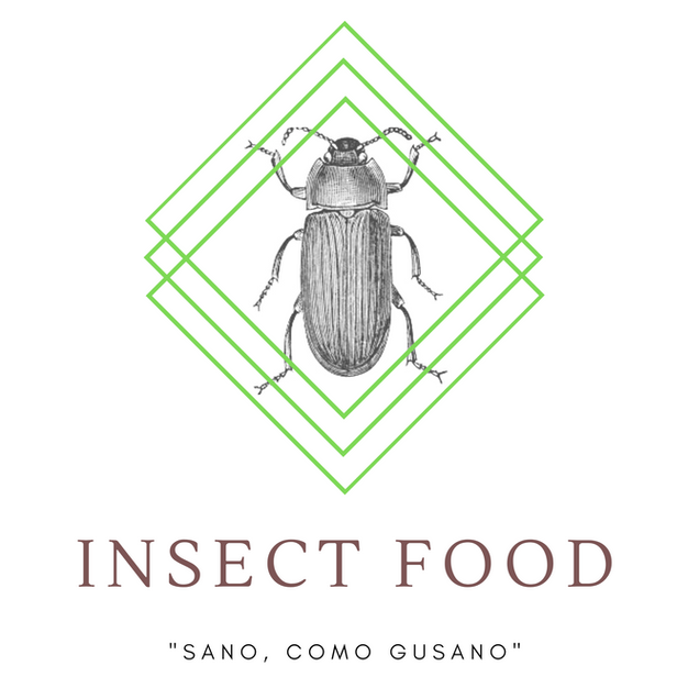 Insect Food | Aguascalientes | México