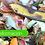 Thumbnail: Soluciones de Bioconversión y Valorización de Subproductos Orgánicos