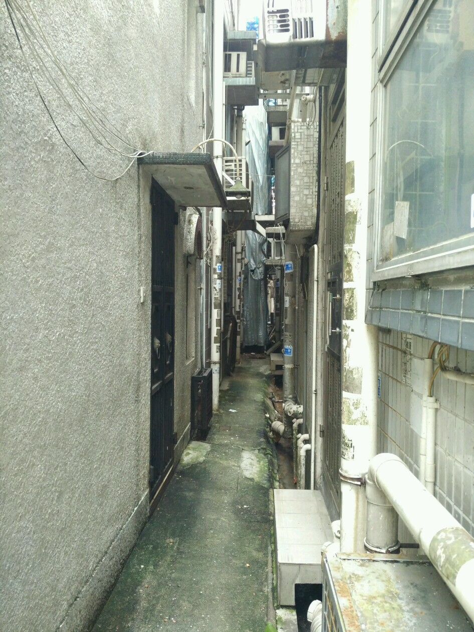 沙田田心村