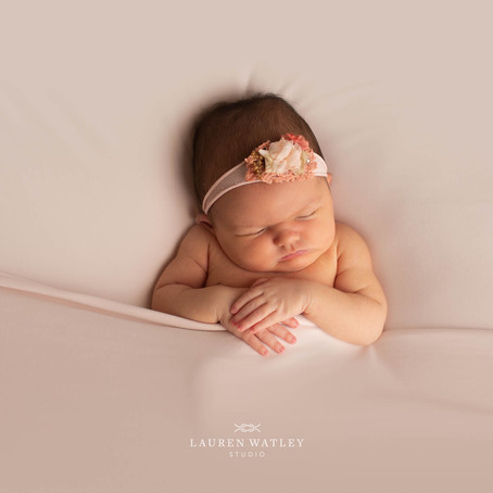 Welcome Baby Reed: Severna Park Newborn Photographer