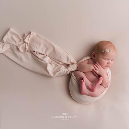 Maren Paige | Severna Park Newborn Photographer