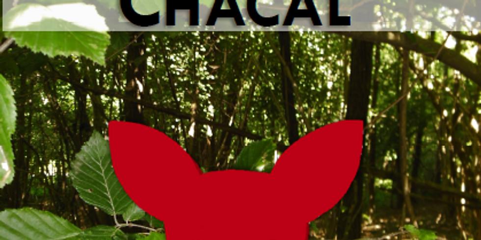 Sortie du Masque du Chacal