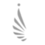 bteam wing Abbreviated png.png