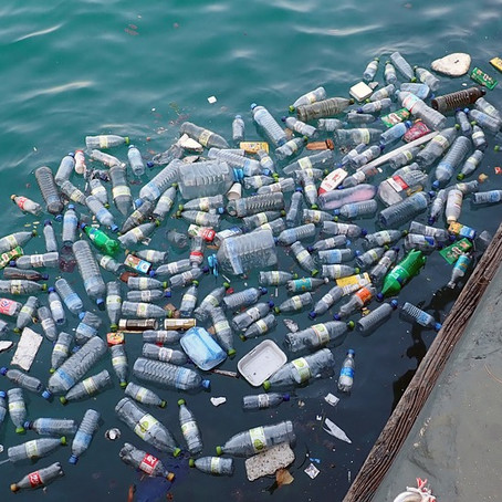 """""""We are throwing a garbage truck a minute into the oceans full of plastic"""" UK Environmentalist warns"""