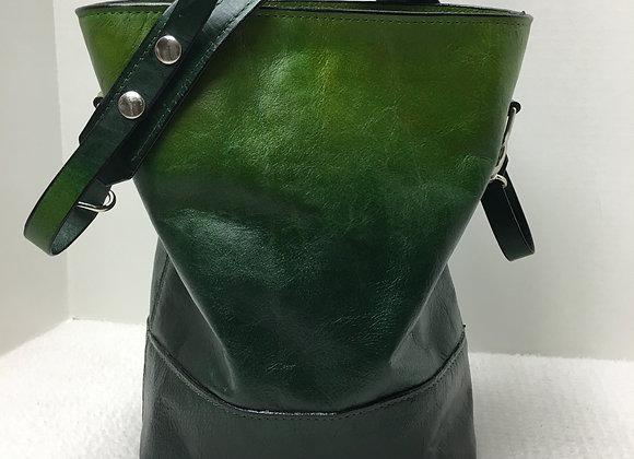 Leo ~ 2-Toned Green Ombre