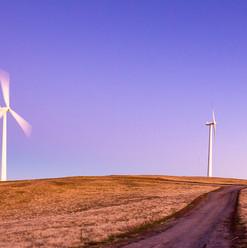 Starfish Hill Wind Farm SA