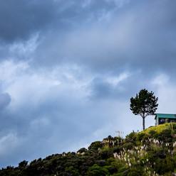 Opito Bay, NZ