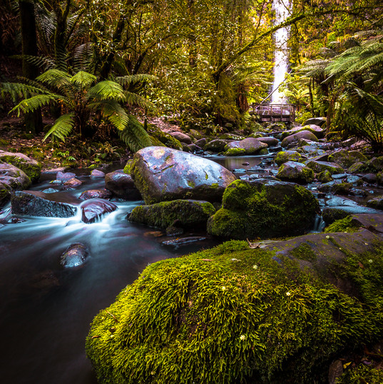 Erskine Falls, Lorne VIC