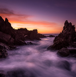 Petrel Cove SA