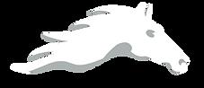 Sanathkumar foundation logo-light grey.p
