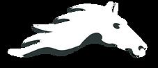 Sanathkumar foundation logo-dark grey.pn