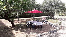 loire gite chinon private garden bbq and table and chairs