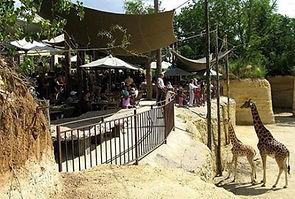 Zoo Doue La Fontaine