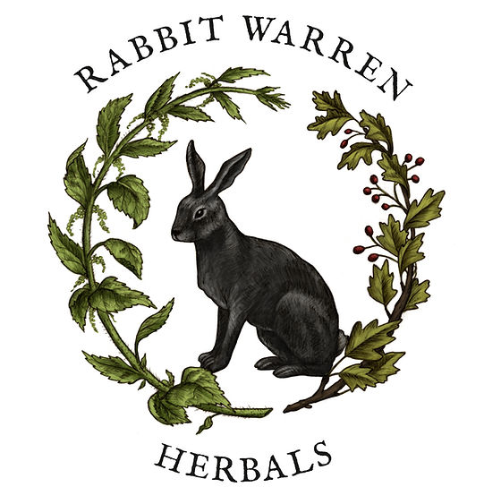 clinical hebalist, herbalism, herbal products, vermont