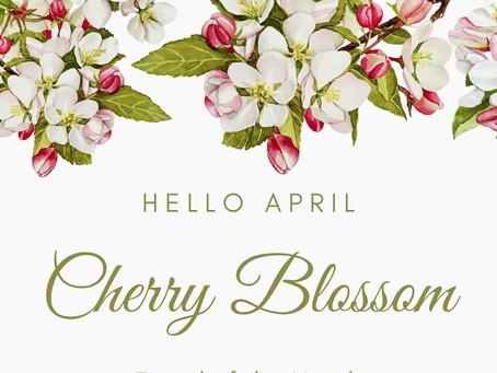 Cherry Blossom Facial {April Facial of The Month}