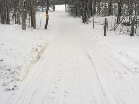 1/18/2021-Trail Report