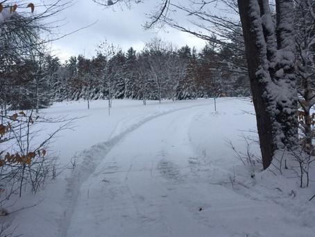 1/17/2021-Trail Report