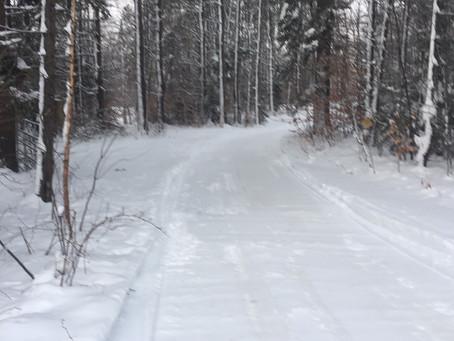1/23/2021-Trail Report