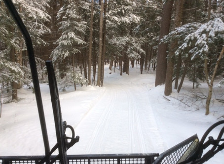 02/15/20- Trail Report