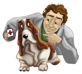 Serviços veterinários essenciais permanecem disponíveis à população