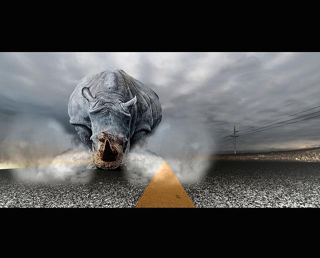 stockvault-rhinoceros-chaos138091.jpg