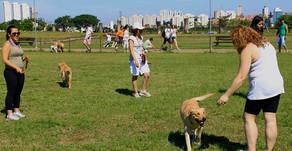 """Royal Canin lança campanha""""MeuPetnopeso"""" e promove evento gratuito no Parque Vila Lobos"""