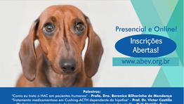 Hiperadrenocorticismo – Ciclo de Debates com Especialistas 2018 -ABEV