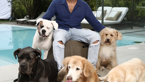 Bruno Gagliassoe seus cães renovam contrato paracampanha de Simparic, da Zoetis