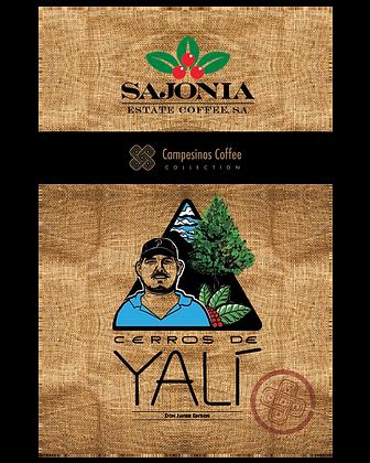 Nicaragua Cerros Yali Micro Lot - 1kg Medium-Dark Roast