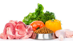 Hipersensibilidade alimentar