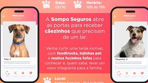 Sompo Seguros promove feira de adoção de animais aberta ao público no dia 5 de outubro