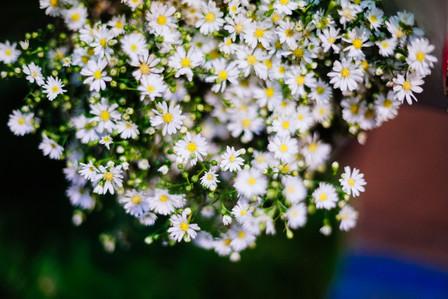 ดอกไม้.งานแต่งงาน.สัญลักษณ์