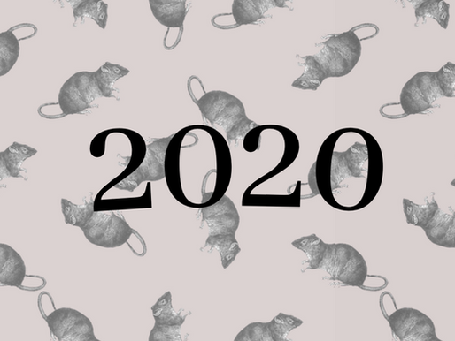 Reflecting on the Year of the Rat