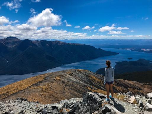 #4// NEW ZEALAND = wowzers. 1st time hitch-hiking/sandflies suck