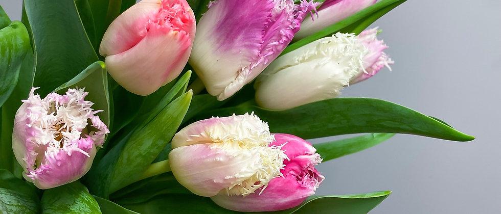 25 Luxury Mixed Tulip Bouquet
