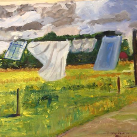 Boerenwas in Brabant