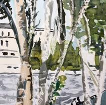 Berken langs de Seine
