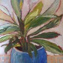Plant in blauwe pot