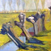 Wilgen in de polder II