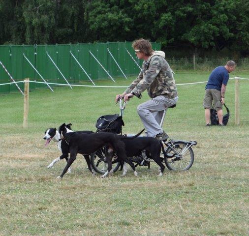 Dog powered bike?