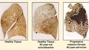 Πνευμονολογικές και καρδιαγγειακές επιπτώσεις της αιθαλομίχλης