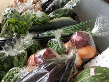 上青野でのお楽しみは朝市の新鮮野菜