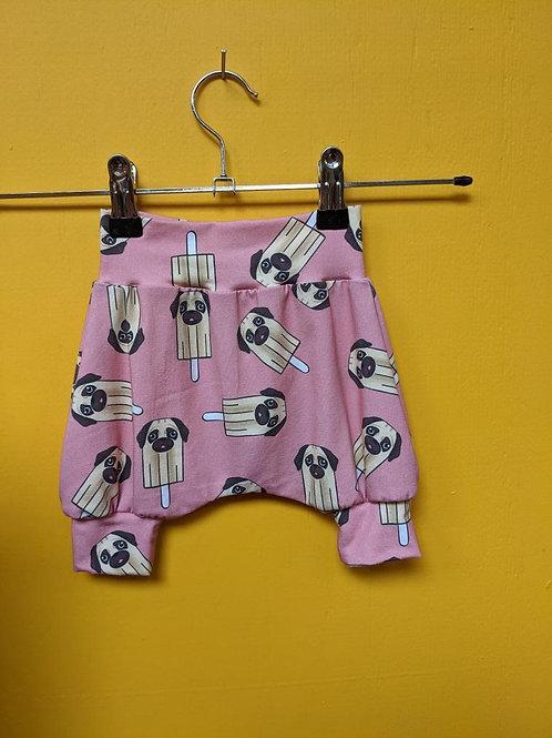 Pugsicle Shorts