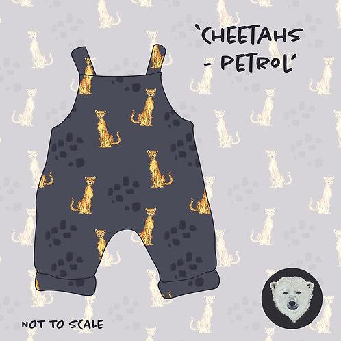 Cheetahs Petrol