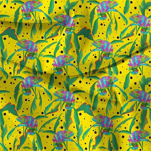 Rainbow Chameleons